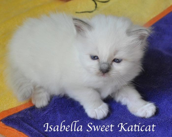 Isabella_003
