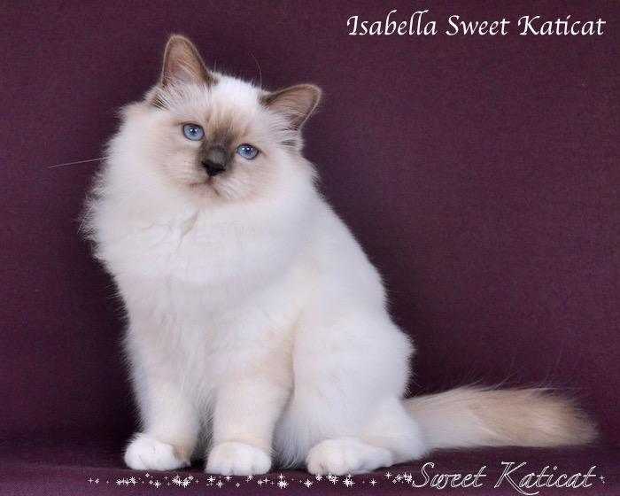 Isabella_013