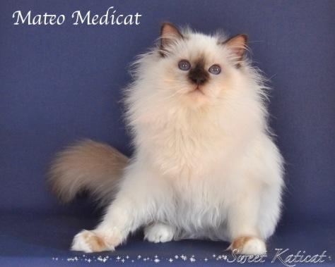Mateo0021