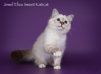 Eliza_ow2