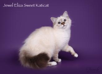 Eliza_ow3