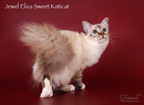 Eliza_ow6
