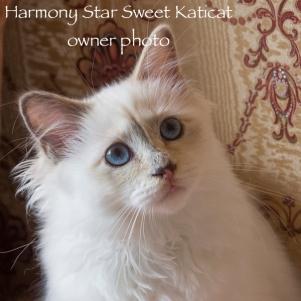 Harmony02