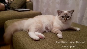 Jewel Kate_ow2