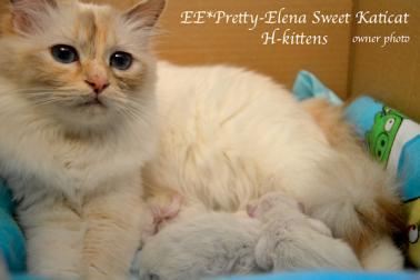 Pretty-Elena 24.03.2015