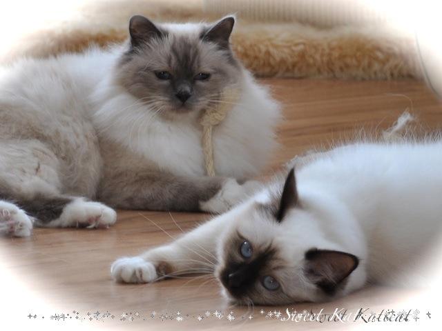 Alizeé ja Noelle