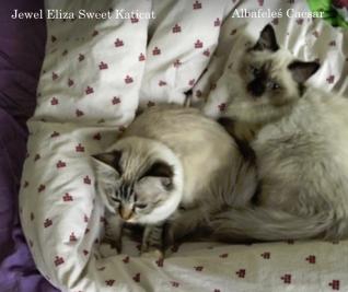 Caesar & Eliza