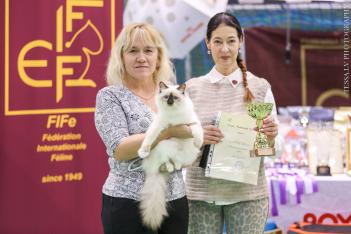 Eesti Parimad Kassid 2017 - Mercedes Sweet Katicat