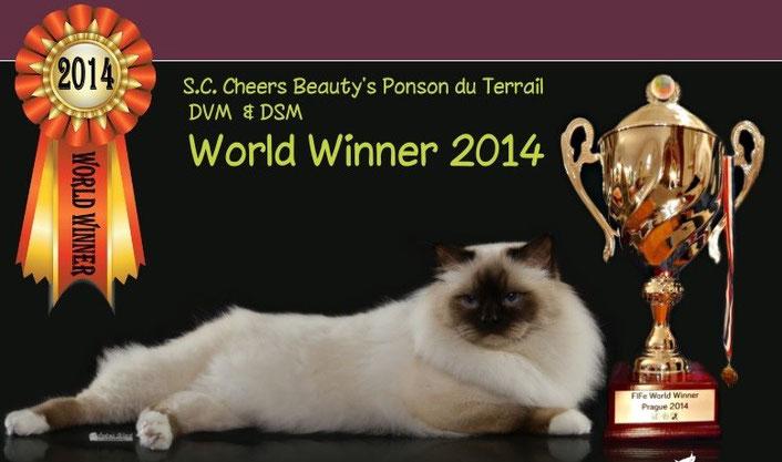 WW14 SC Cheers Beautys Ponson du Terrail,DVM,DSM SBIb