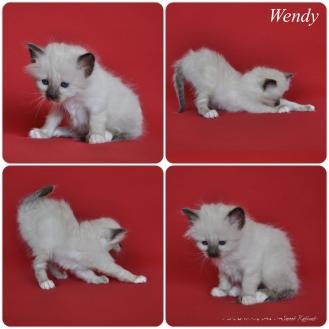 Wendy_1m